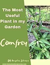 Comfrey : The Most Useful Plant in My Garden