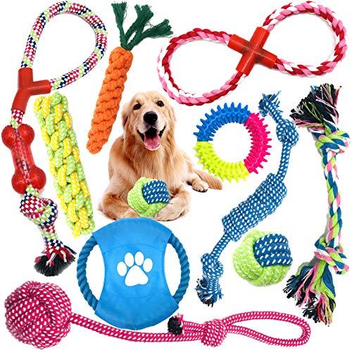 MOOING Grupo de Juguetes para Perros,Durable Masticable Cuerda,Juguete para Morder para Perro,Herramientas de Entrenamiento, 100% Algodón, Juguetes para Mantener a su Perro Sano(10 Piezas)