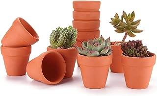 T4U 2.5 Inch Terracotta Clay Pots Pack of 12 - Mini Hand Craft Nursery Plant Pot Succulent Cactus DIY Pottery Planter Home Garden Windowsill Decoration Christmas Gift