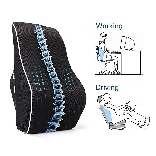 Fabulous Desk Chair Lumbar Support Cushion Amazon Com Home Interior And Landscaping Ologienasavecom