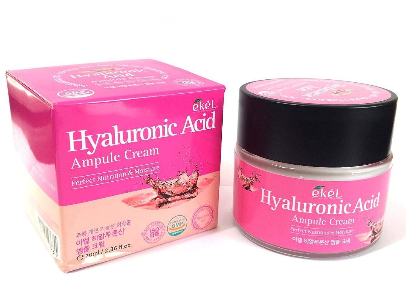 専ら逃げる発生[EKEL] ヒアルロン酸アンプルクリーム70ml / 完璧な栄養と水分 / 韓国化粧品/ Hyaluronic Acid Ampule Cream 70ml / Perfect Nutrition & Moisture / Korean Cosmetics [並行輸入品]