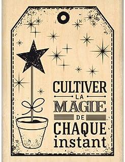 Florilèges Design FE214051 Tampon Scrapbooking Cultiver La Magie, Beige