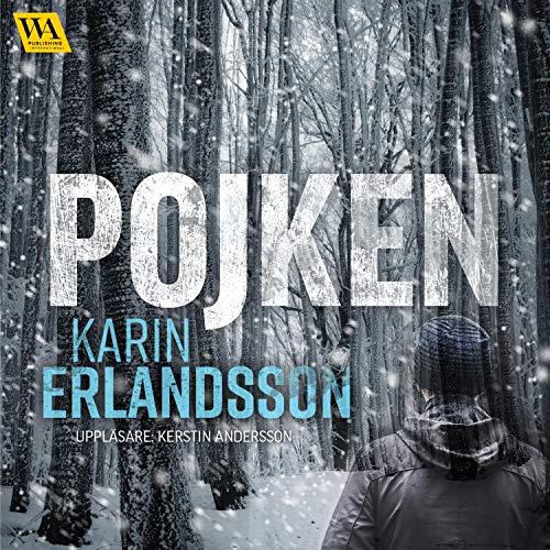 Pojken Audiobook By Karin Erlandsson cover art