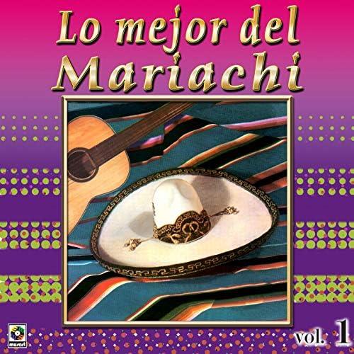 Mariachi México, Mariachi Guadalajara & Mariachi América