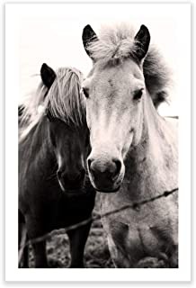 Humble Chic Wall Art Prints - Unframed HD Printed Modern Picture Poster Decorations for Home Decor Living Dining Bedroom Kitchen Bathroom Office Dorm Room - Two Horses Cute Animals, 24x36 Vertical