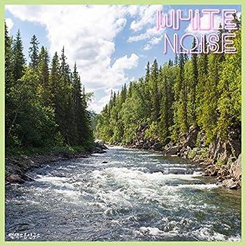 White Noise Pt. Jiam Valley