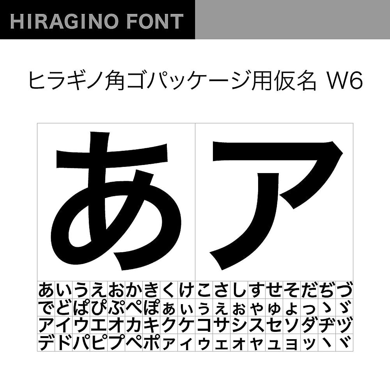 注文実装する有効なOpenType ヒラギノ角Pack仮名 W6 [ダウンロード]