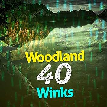 Woodland: 40 Winks