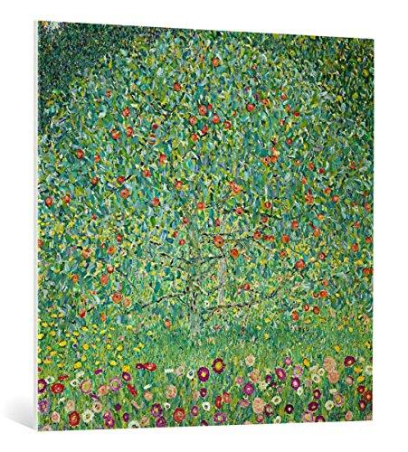 kunst für alle Leinwandbild: Gustav Klimt Apfelbaum I - hochwertiger Druck, Leinwand auf Keilrahmen, Bild fertig zum Aufhängen, 100x100 cm