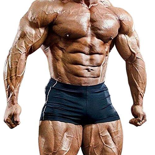 Musclealive Mens Gym Enge 4 inseam Bodybuilding Shorts Polyester und Lycra, PLN-Black, Gr.M