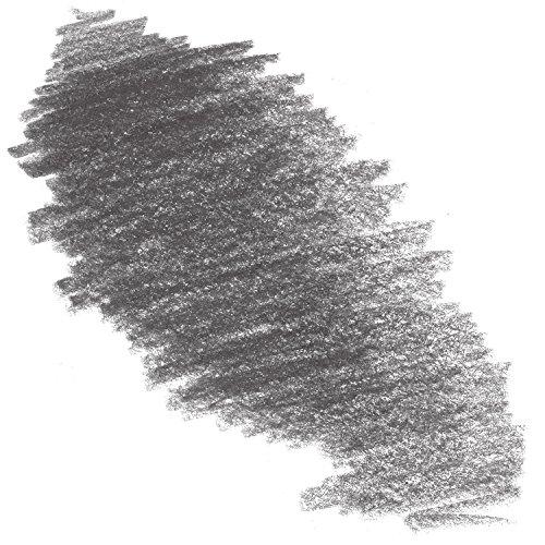 Caran D'ache Neocolor II Crayon 009 Black (7500.009)