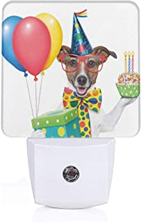 Seuriamin Birthday Decorations for Kids Waiter Server Party Dog with Hat Cone Cupcake Balloons Boxes Dusk to Dawn Sensor of Corridor Energy Efficient Night Light