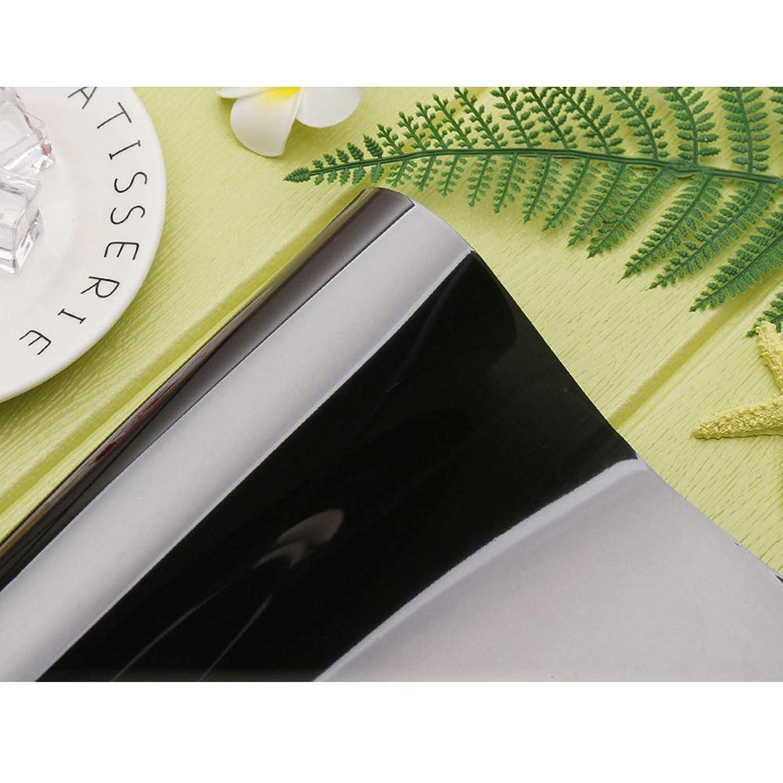 鋼コカイン安定したYiwanda 建築ガラスフィルム 窓ガラスフィルム 断熱 遮熱 外から見えない 目隠しフィルム おしゃれ 剥がせるはり直し可能 長持ち 再利用可能 グレーシルバー (120*1000CM,5)