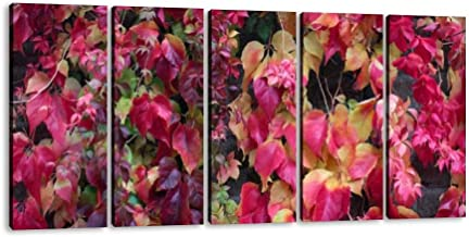 SIIKEI Virginia Creeper parthenocissus 'veitchii Fall Colors red Leaves 5 Panel Wall Art Canvas for Home Decor Paintings Contemporary Artwork Framed Ready to Hang Posters and Prints (60''Wx32''H)