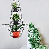 Malmo Hängekorb 3 stöckiger Pflanzen-,Gemüse-,Obstkorb, Basket Verschiedene Ausführungen zur Aufbewahrung Farbe: schwarz - 9