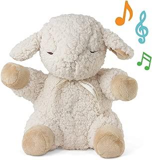 Cloud B Sleep Sheep Plush Sound Soother【並行輸入商品】