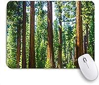 Mabby マウスパッド,National Parks Digital Printing Blanket,ラップトップコンピュータPCオフィス用の滑り止めラバーベースマウスパッド、かわいいデザインデスクアクセサリー