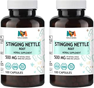 stinging nettle root bodybuilding