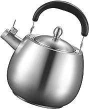 KETTLES Keuken 304 RVS Gas Huishoudelijke Gasfornuis Open Vlam Grote Capaciteit Fluitje Zilver XMJ (Kleur: Zilver, Maat: 4L)