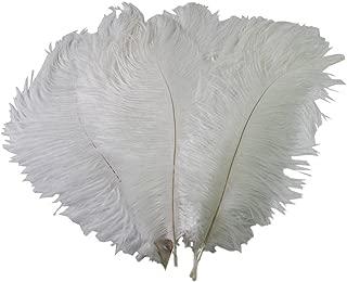 Special Sale Genuine OSTRICH Feathers Wholesale Bulk 10-14