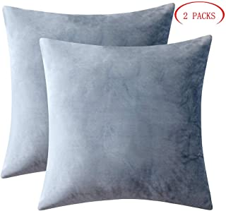 GirlyGirl Boutique Cozy Soft Velvet Square Throw Pillow Covers for Couch Bedroom Car Decorationset(18 x 18 Inches,Pack of 2,Dusty Blue)