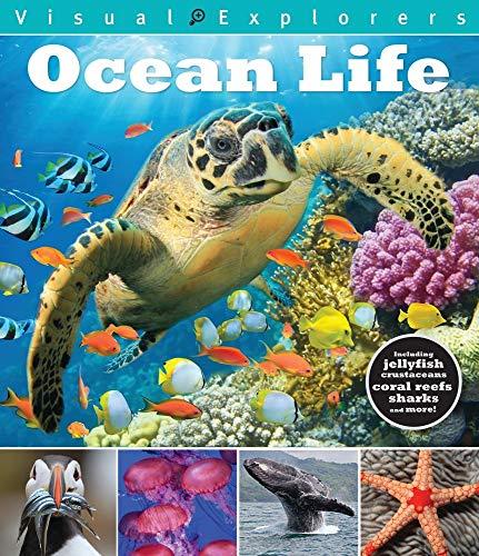 Ocean Life (Visual Explorers Series)