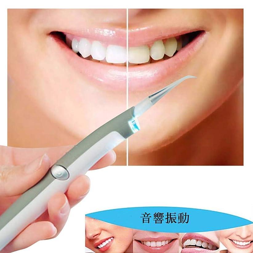 文規模プロフェッショナルCarejoy LED歯科用歯ステイン消しゴム 電動デンタルステインプラークリムーバー 歯科クリーニングシステム 歯クリーナー 歯科汚れリムーバー LEDの歯汚れ消しゴムプラークリムーバー 口腔衛生ケアのためのプロフェッショナルな歯科用クリーニングツール ホワイトナー 家庭用
