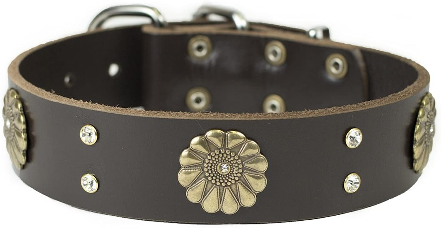 Dean and Tyler  FLEUR  Dog Collar With Nickel Buckle  Brown  Size 46cm By 4cm Width. Fits neck size 16 Inches to 20 Inches.