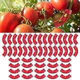 Wondsea 50 clips de entrenamiento de plantas de 90...