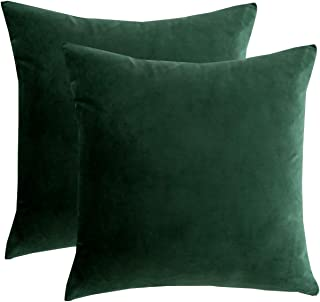 RainRoad Velvet Decorative Throw Pillow Covers Cushion Cover Pillow Case for Sofa Couch Bed Chair,Soft Square Dark Green Throw Pillows 18x18 Inch,Set of 2