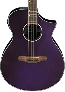 Best ibanez pf acoustic electric guitar Reviews