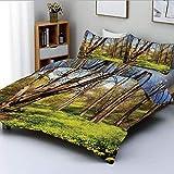 Juego de funda nórdica, campo de flores de bosque de primavera y árboles Dreamy Eco en paisaje soleado de cielo abierto Juego de cama decorativo de 3 piezas con 2 fundas de almohada, amarillo azul mar