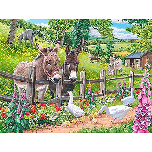 Diamond Painting by Number Kits for Adults Kids Donkey DIY 5D Diamond Embroidery Full Drill Rhinestone Crystal Cross Stitch Pictures Art Craft Canvas Home Wall Decor Gift Y3663 Square Drill,25x30cm