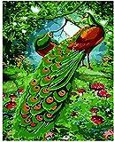 Kit de pintura por números, árbol de setas de pavo real, pintura de bricolaje por números para adultos, niños, principiantes en lienzo, pintura acrílica al óleo de bricolaje, 40 × 50 cm, sin marco