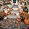 120 Pieces Artificial Fall Maple Leaves 6 Mixed Colored Fake Autumn Leaf for Thanksgiving, Halloween Wedding Party Home Kitchen Table Decor #1