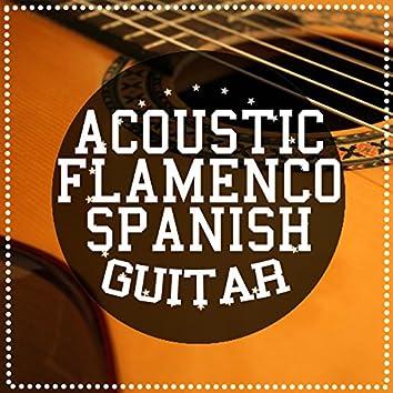 Acoustic Flamenco Spanish Guitar