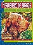 Perdiguero De Burgos, Nuevo Li