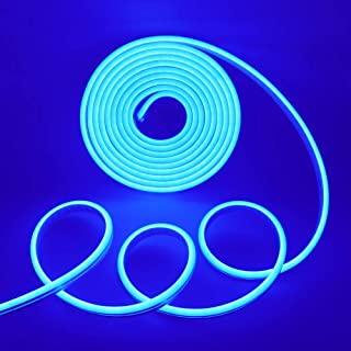 XUNATA LED Strip Lights, LED Neon Light Rope, Outdoor Flexible Light, DC 12V 16.4 Ft/5m 2835 600 LEDs Silicone Tape Light for Home, Indoors, Outdoors Decor DIY(Blue)