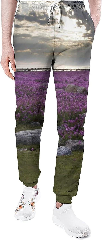 Grassland Under The Seasonal Wrap Introduction Sunset Sweatpants Pants Funny Joggers Nippon regular agency Lo Man