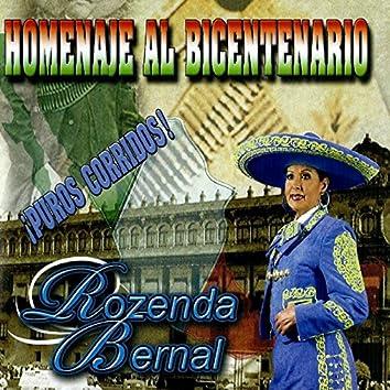 Homenaje Al Bicentenario
