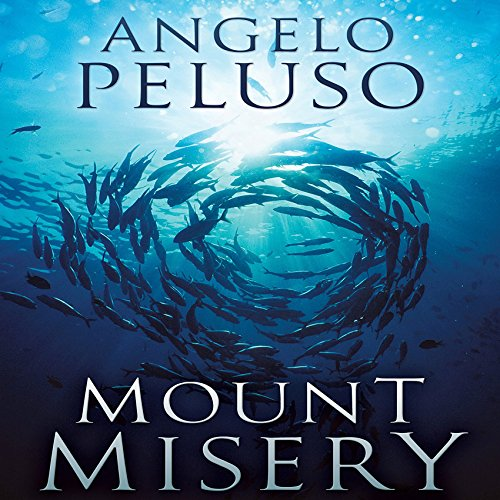 Mount Misery: A Novel cover art