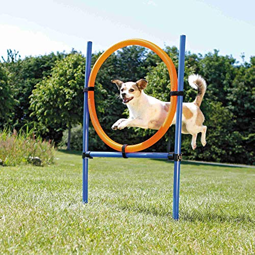 Trixie 3208 Dog Activity Agility Ring, Kunststoff, 115 × ø 3 cm, ø 65 cm, blau/orange
