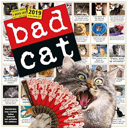 Bad Cat 2019 Calendar