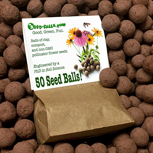 US Native Wildflower Seed Bombs for Pollinators (50 Pack). Regional Wildflower Mix Seed Balls for Guerrilla Gardening (Northeast)