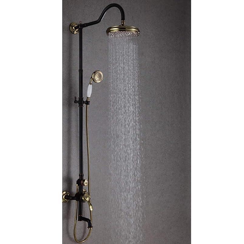 逃す専門用語コンテンポラリーZYL-YL 頭、大きなシャワーシャワーセット、スリー機能大きなシャワートップバスルームシャワースプレーシャワー降雨の高圧力とハンドシャワーヘッドキットシャワー蛇口セット