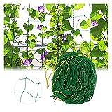 HJHQQ-CZYHG Supporto Net Garden Network per Le Piante da Arrampicata, classifica Net Rank Aiuto Pianta Pomodori Pomodori e Piante da Arrampicata (Color : 1.8m X 5m)