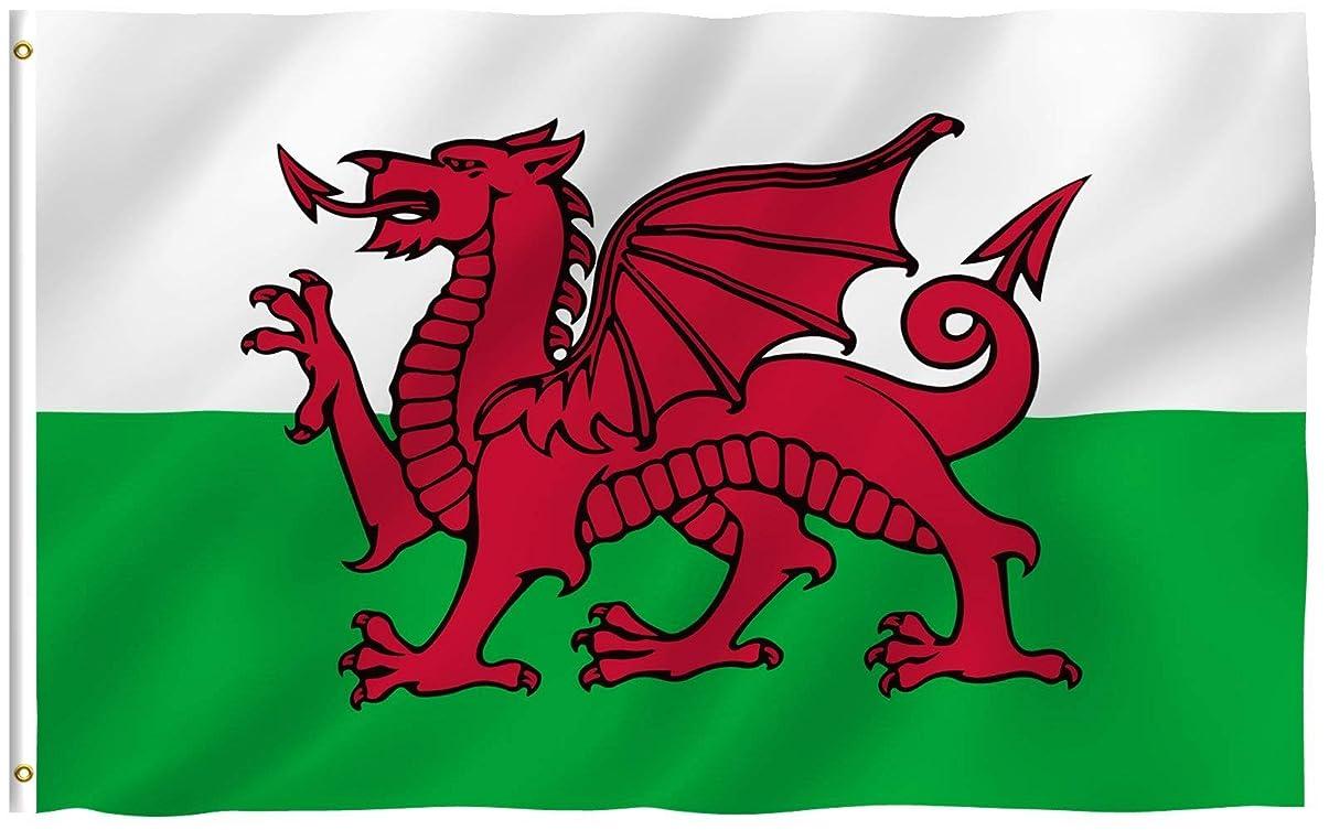 松投資する不明瞭Anley フライブリーズ 3X5 フット旗旗-鮮やかな色とUVフェード 耐性 -キャンバス ヘッダーとダブル ステッチ ウェールズの国旗 真鍮 グロメット付き ポリエステル