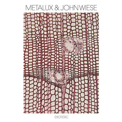 Metalux And John Wiese