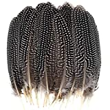 Dxhycc 50 Pcs 15-20cm Natural Spotted Feathers for DIY Crafts Decoration Collection Wedding Party Home Decorations