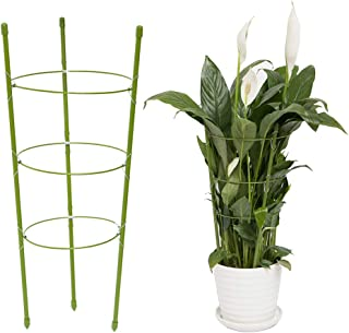 Best YiTai Plant Support Cages 17.7 Inches Plant Cages with 3 Adjustable Rings, Supporter Climbing Plants Review